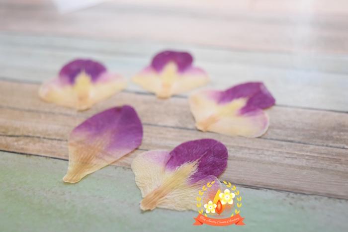アイロン,押し花